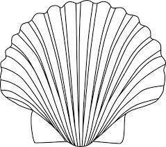 Seashell shell clip art black and white sea shell clipart shells clipart