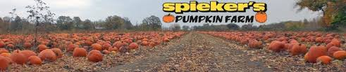 Half Moon Bay Pumpkin Patches 2015 by Find Pumpkin Patches Near Green Bay