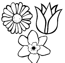 Coloring Pages Flower Pot Page Printable Kids Colouring