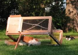 live cat trap drop trap design bank