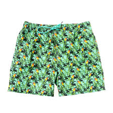 100 Coc Republic O Mens Tropical Bird Board Shorts In Sea Green