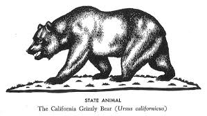 State Flag Revisions California Part 2