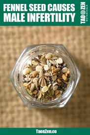 Pumpkin Seeds Zinc Testosterone by 127 Best Boost Testosterone Images On Pinterest Health Tips