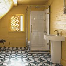 Bathrooms The DecadesLong Rise Of Americas Obsession Psychology