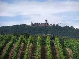 chambre agriculture alsace alsace médiévale rando à pied espace evasion
