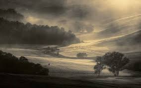 Nature Landscape Mist Morning Trees Field Sunrise Tuscany