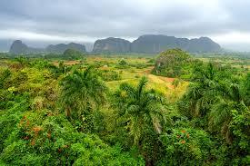 Lush Green Vinales Valley