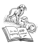 The Creation Story Bible Coloring Pages