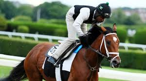 Halloween 2007 Castellano by Belmont Stakes Analysis 2017 Newsday