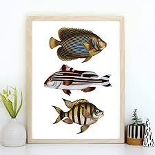 din a4 kunstdruck ungerahmt fische fisch trio retro
