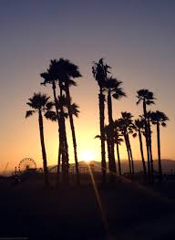California Beach Palm Trees Sunset Ferris Wheel Love Santa Monica Litalphotog Lakadaizical On The