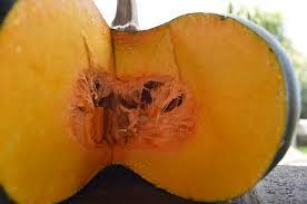 Kohala Pumpkin Patch Hours by Fundraiser By Anna Peach Get Growing Hawaii