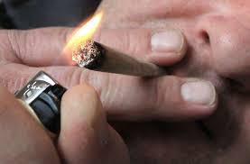 cannabis kann familien zerstören kifft nicht eure zukunft