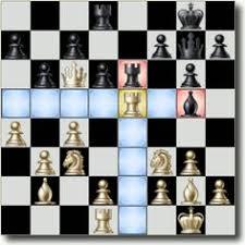Rook Chess Piece Scenario