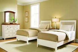 Frozen Bed Set Queen by Bedding Set Toddler Bedding Sets For Boys On Crib Bedding Sets