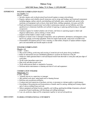 Combination Welder Resume Samples | Velvet Jobs Combination Resume Samples New Bination Template Free Junior Word Sample Functional 13 Ideas Printable Templates For Cover Letter Stay At Home Mom Little Experience Example With Accounting Valid Format And For All Types Of Rumes 10 Format Luxury Early Childhood Assistant Cv Vs Canada Examples Bined Doc 2012 Teachers Kinalico