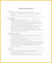 Resume Synopsis Example Sample Professional