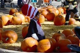 Pumpkin Patch Denver by Where To Go For Holiday Fun Around Denver