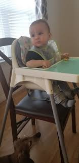 Expert Advice On Feeding Your Children - Feeding Littles High Chair Dinner Table Seat Baby Booster Toddler Trend Sit Right Paisley Chicco Caddy Hook On Vapor 10 Chairs Youll Wish Were Your Registry Parenting Comfy High Chair With Safe Design Babybjrn 360 8 Best Of 2018 Portable Top For Babies Toddlers Heavycom Expert Advice Feeding Children Littles Take A Look At This Regalo Navy Easy Diner Hookon Kohls