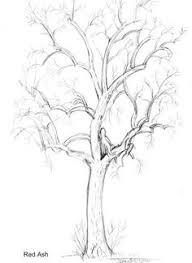 EMG Zine Dryads and Trees Drawing tutorials