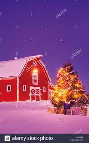 Christmas Tree With Gifts, Red Barn, Near Oakbank, Manitoba ... Christmas Barn From The Heart Art Image Download Directory Farm Inn Spa 32 Best The Historical At Lambert House Images On Snapshots Of Our Shop A Unique Collection Old Fashion Wreath Haing On Red Door Stock Photo 451787769 Church Stage Design Ideas Oakwood An Fashioned Shop New Hampshire Weddings Lighted Picture Shelley B Home And Holidaycom In Festivals Pennsylvania Stock Photo 46817038 Lights Moulton Best Tetons