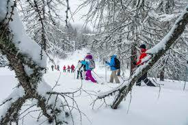 100 Leo Trippi On Twitter Bad Kleinkirchheim Skiing Fit For