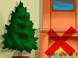 Plantable Christmas Tree Ohio by How To Plant A Living Christmas Tree With Pictures Wikihow