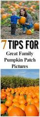 Pumpkin Patch In Clovis Ca by 17 Best Images About Family Photo Ideas On Pinterest Large