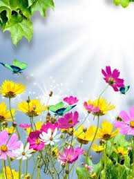 Animated Beautiful Flowers Wallpapers For Mobile 2