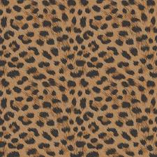 Cheetah Print Room Decor by Leopard Print Luxury Wallpaper 10m New Room Decor All Colours