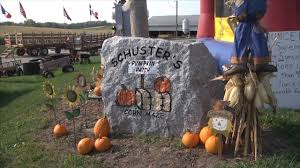 Eastern Iowa Pumpkin Patches by Schuster U0027s Pumpkin Patch Is Ready For Fall Youtube
