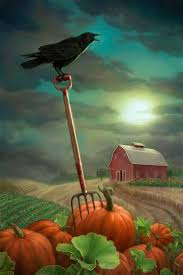 The Great American Pumpkin Patch Arthur Il by 198 Best Halloween Fall Painting Inspiration Images On Pinterest