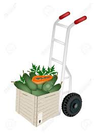 Hand Truck Or Dolly Loading Wooden Crate Or Cargo Box Full With ...
