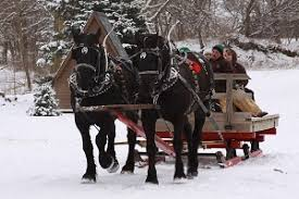 Tannenbaum Christmas Tree Farm Michigan by Southwest Michigan Christmas Tree Farms Choose And Cut Christmas