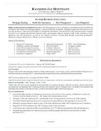 Resume For A Bank Job Banking Executive Sample In