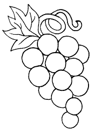 New Grapes Coloring Page 67 For Your Free Kids With
