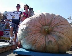 Worlds Heaviest Pumpkin Pie by World Record Pumpkin Orland Free Library