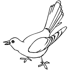 Cuckoo Bird Is Singing Coloring Pages