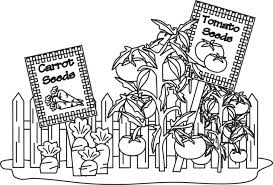 Coloring Pages Of Gardens Vegetable Garden Photos