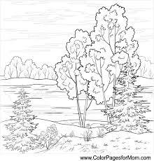 Landscape Coloring Page 16