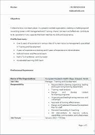 Whats A Good Resume Title Lovely Templates Examples