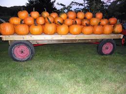 Siegels Pumpkin Farm by Patton U0027s Pumpkin Patch U2013 Millstone Township Elk County Pennsylvania