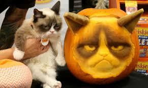 Pumpkin Carving Cat Face Template by Grumpy Cat Pumpkin Carving Stencils