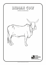 Indian Cow Coloring Page