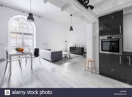 modern apartment in industrial style with kitchen and open