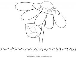 Kid Color Pages Ladybug Life Cycle