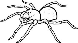 Coloring Pages Spiders Bug Page 16