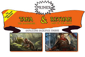 Mtg Faerie Deck Budget by Primer Tana And Reyhan Fungi And Saprolings Commander Edh