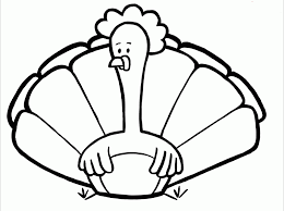 Turkey Pictures For Kids