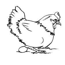 dessin pour imprimer selection coloriage poule imprimer sur page dessin pour et